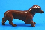 R301c Dachshund Puppy Dog