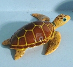 R126 Loggerhead Sea Turtle