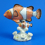 R142 Clown Fish