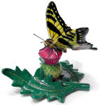 R288 Swallowtail Butterfly On Thistle