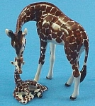 R089 Giraffe With Baby