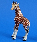 R295b Giraffe Baby, Left Facing