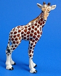R295c Giraffe Baby, Right Facing