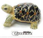 Little Critterz Lc309 Tortoise