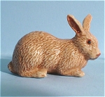 K0041b Brown Rabbit
