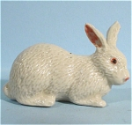 K0041c White Rabbit
