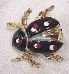 Enameled Beetle Pin