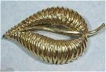 Unmarked Goldtone Leaf Pin