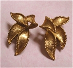 Emmons Leaf Earrings
