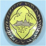 Siam Sterling Pin