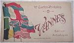 Old Souvenir Postcard Book - Vannes