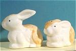 1980s Ceramic Rabbit Salt And Pepper Shaker Set