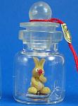 Miniature Bunny Rabbit In A Bottle