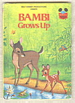 Bambi Grows Up - Disney
