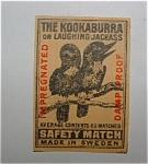 The Kookaburra (The Laughing Jackass)