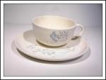 Homer Laughlin Royal Maytime Cup & Saucer