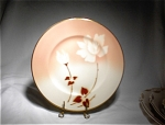 Syracuse Madame Butterfly #8 Dinner Plate/mint