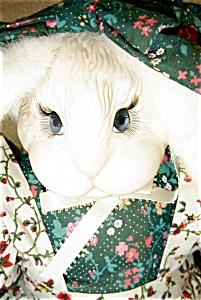 Janis Berard Porcelain Rabbit (Image1)