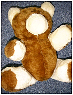 Sheepskin Bear (Image1)