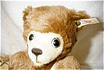 Click here to enlarge image and see more about item 1408: Steiff Collectible Mohair Bear