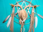 Click here to enlarge image and see more about item 445: Sun Dance Dream Catcher