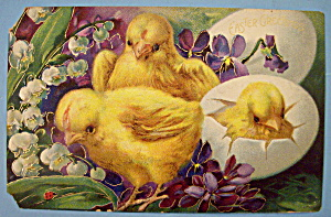 Easter Greetings Postcard w/Chicks & 1 Chick Hatching (Image1)