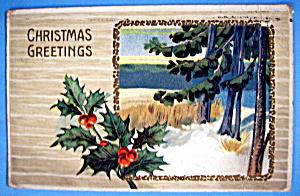 Christmas Greetings Postcard with Mistletoe & Outdoors (Image1)