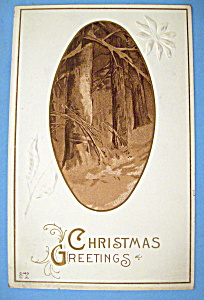 Christmas Greetings Postcard w/View of the Outdoors (Image1)