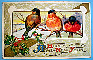 Happy New Year Postcard with 3 Birds Sitting on Branch (Image1)