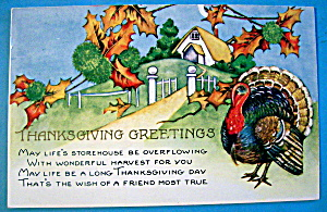 Thanksgiving Greetings Postcard with Turkey & a Hill (Image1)