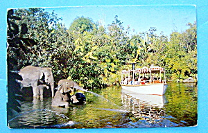 Elephant Bathing Pool Postcard (Image1)
