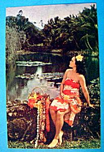 Hawaiian Maiden Postcard (Image1)