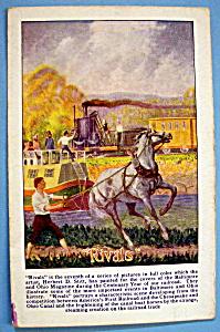 Rivals Postcard By Herbert D. Stitt (Image1)