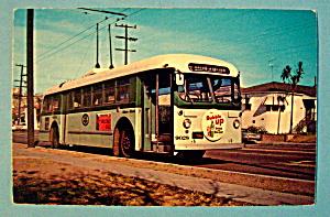 Los Angeles 9028 Motor Bus Postcard (Image1)