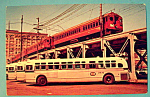 Pacific Electric Red Cars & Buses Postcard (Image1)