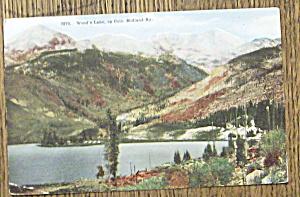Wood's Lake (Image1)