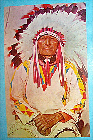 Western Indian Chief Postcard