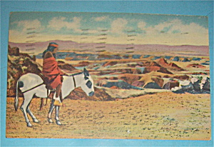 Hopi Indian & Burro At Painted Desert Postcard
