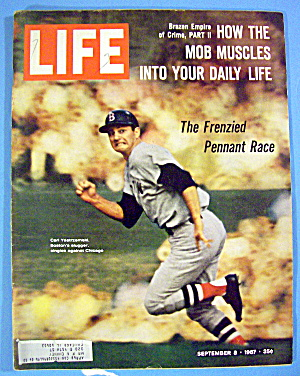 Life Magazine-september 8, 1967-carl Yastrzemski
