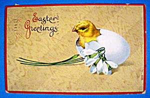 Easter Greetings Postcard w/Chick Sticking Head Out Egg (Image1)