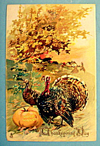 Thanksgiving Day Postcard By Tuck's (Image1)