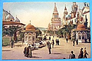Palm Avenue, Panama Pacific Exposition Postcard (Image1)
