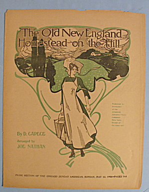 1906 The Old New England Homestead On The Hill