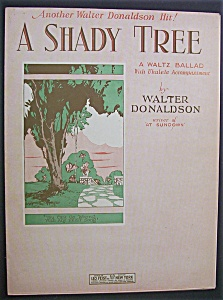 Sheet Music For 1927 A Shady Tree