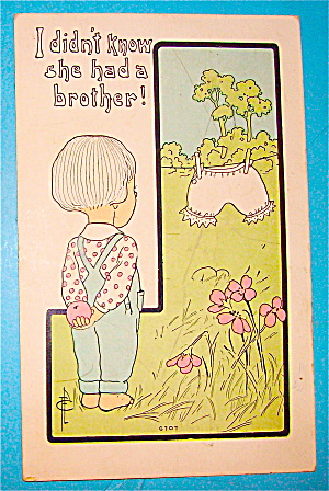 I Didn't Know She Had A Brother Postcard