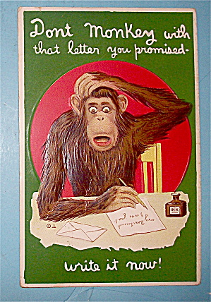Monkey Writing A Letter While Scratching Head Postcard