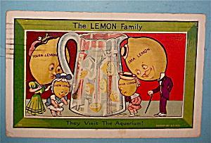 The Lemon Family Visits Aquarium Postcard (Image1)