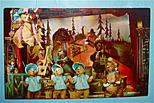 Country Bear Jamboree (Disney World) Postcard (Image1)