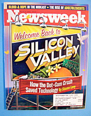 Newsweek Magazine-march 25, 2002-silicon Valley
