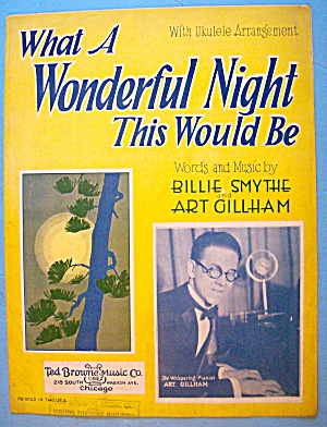 What A Wonderful Night This Would Be Sheet Music 1928